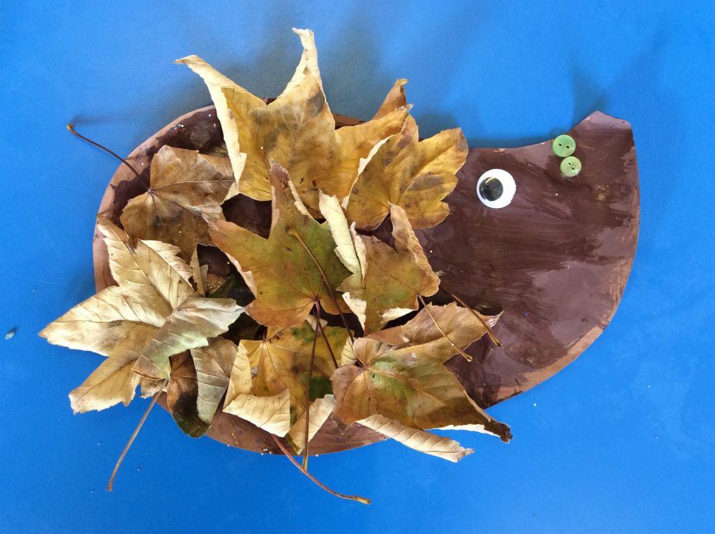 autumn_hedgehog_bertrum_house_nusery